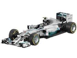 MERCEDES AMG PETRONAS Formula One™ Team, 2014, Coureur Nico Rosberg
